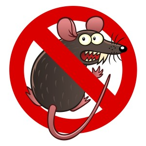 Prevent Rodent and Rodent Damage in DeRidder, LA