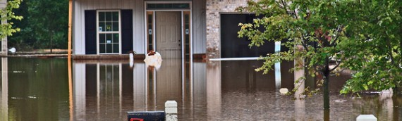 Understanding Flood Insurance and Sewer Backup Coverage